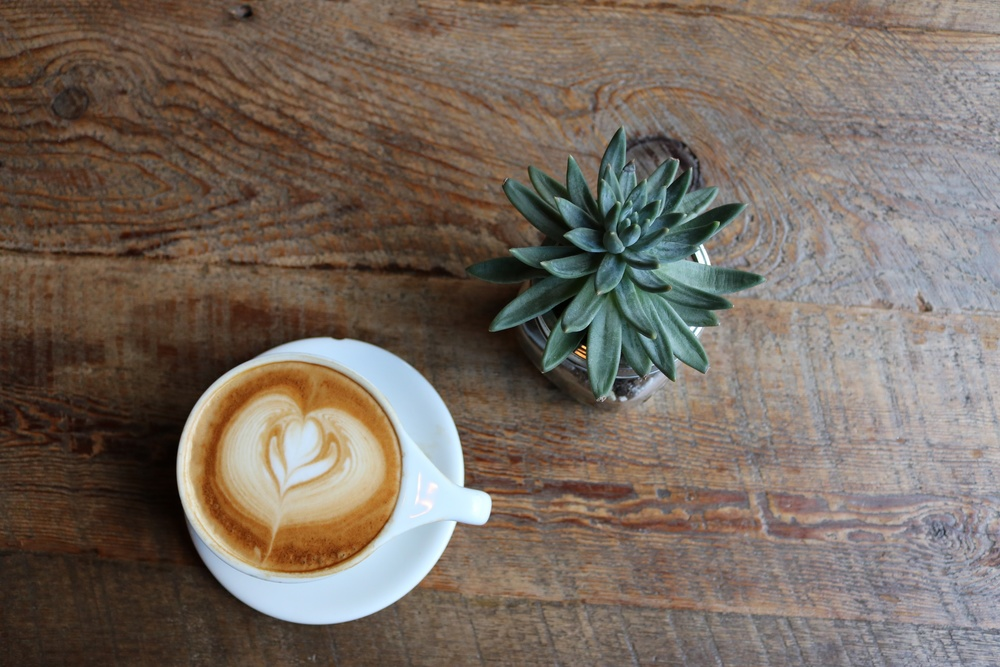 coffee and succulents