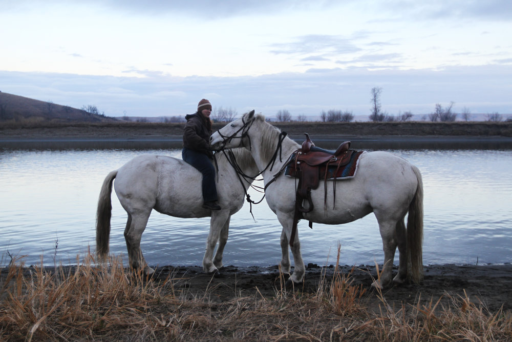Two horses get a drink from the Cannonball River after a prayer ceremony is conducted.
