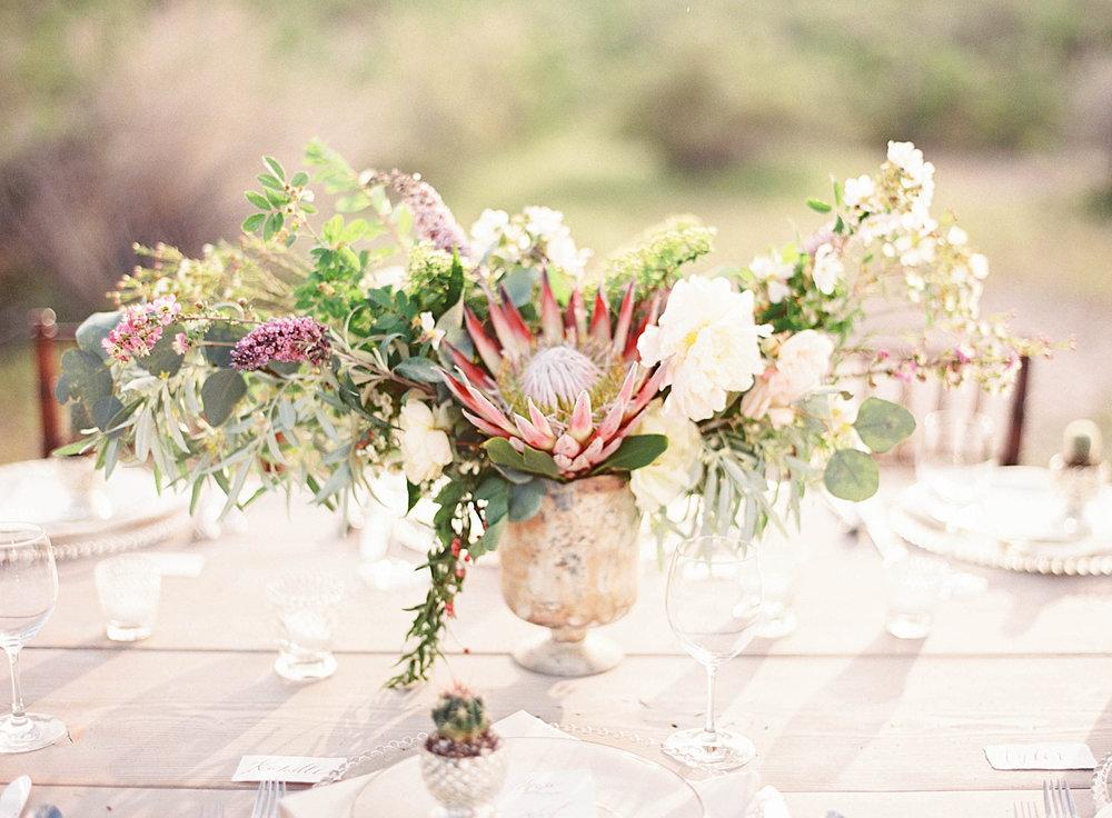 desertflower-45.jpg