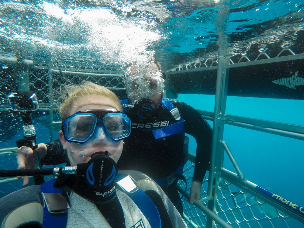 Dreamscape Photography - Michael & Nicole Shark Cage DIving