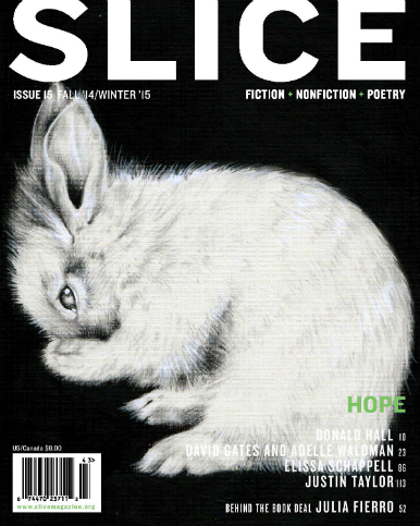 issue-15.jpg