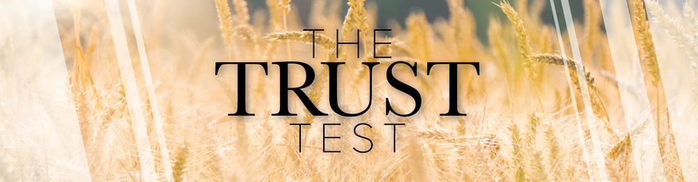 The Trust Test-01.png
