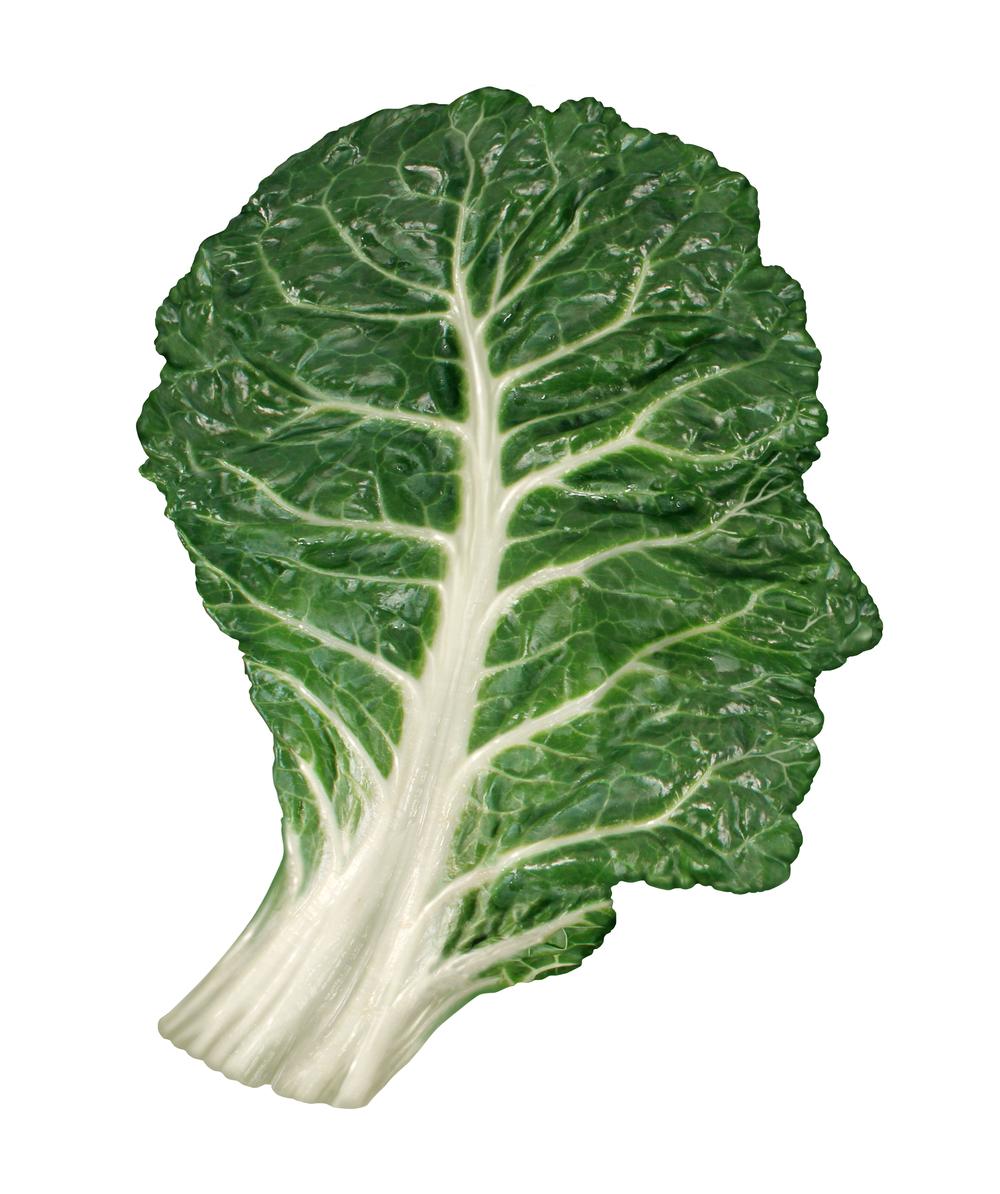 bigstock-Human-Healthy-Diet-50729222.jpg
