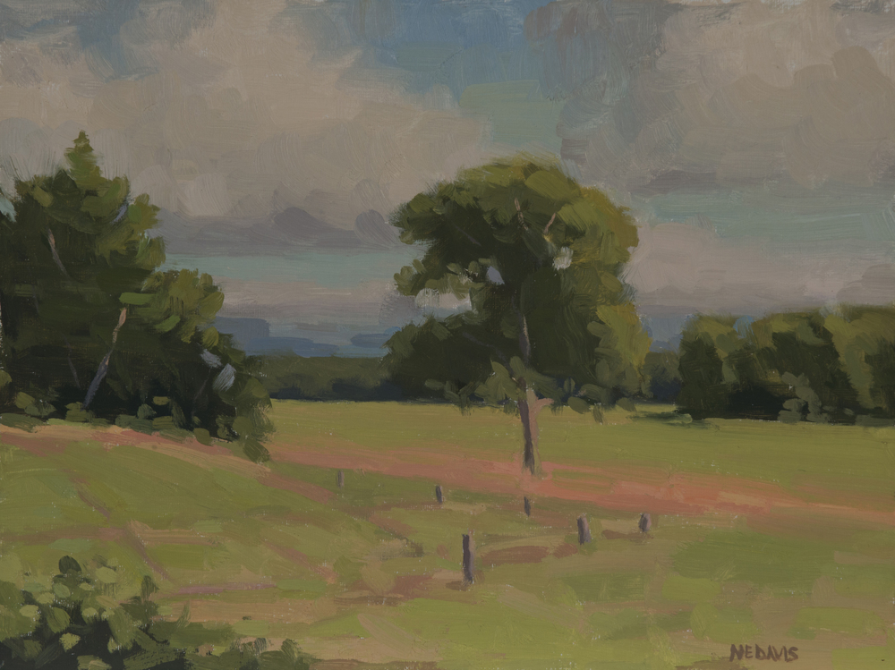 Long Meadow in Summer | 9 x 12