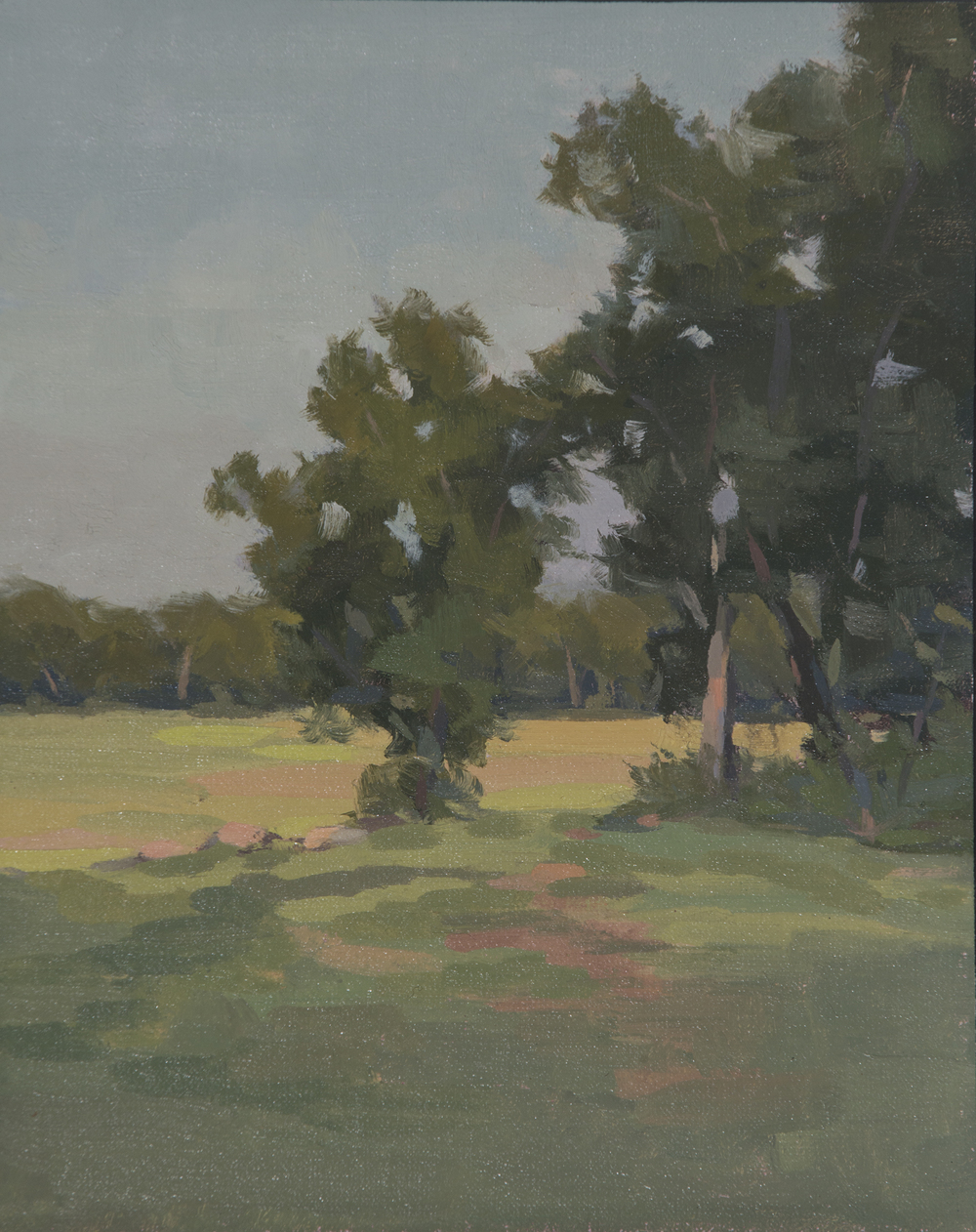 Sunlit Marsh | 8 x 10