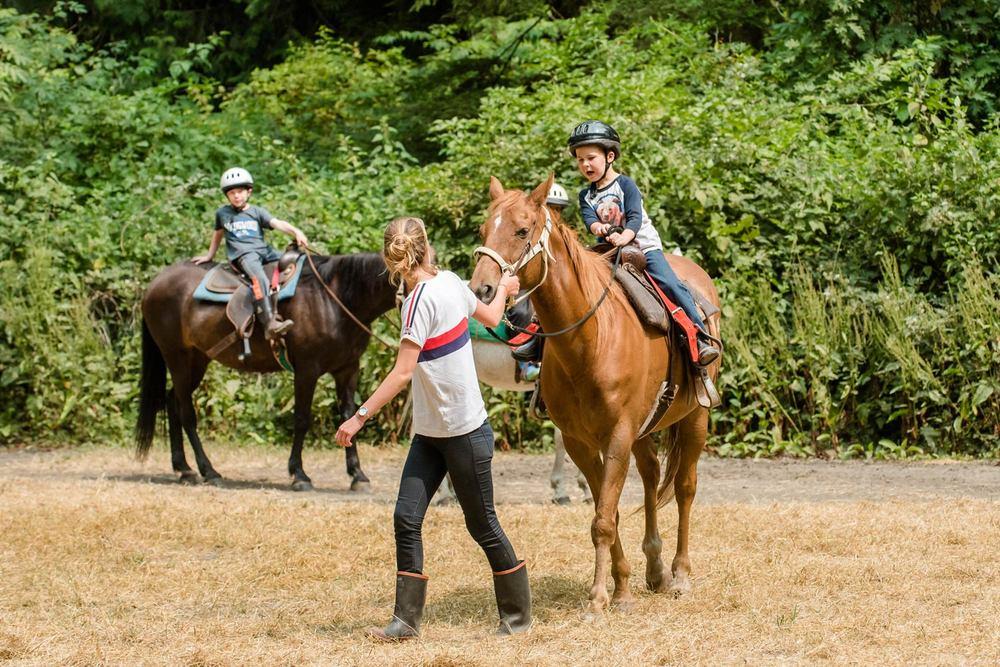 HVC-149-Horses.jpg