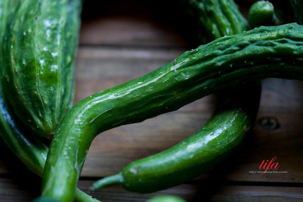 Zucchini, Springdale Farms, Austin, TX