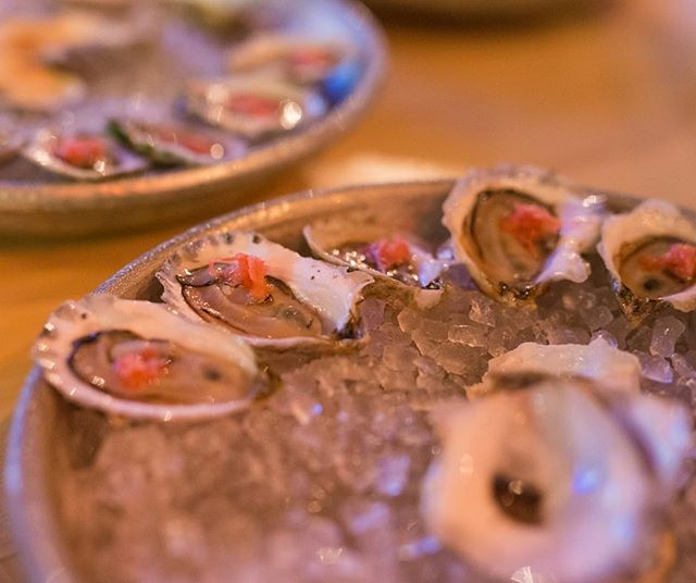 Our #RhumStyleOysters, served with pickled ginger, white soy, horseradish, & lemon- just $1 from 4 until 7! It truly is the #HappiestOfHours. 👌 | #PortlandMaine #RhumPortland #TikiAF #OystersAF #NewEnglandOysters #TikiBar