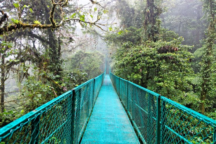 1. Monteverde Cloud Forest Reserve- Monteverde, Costa Rica
