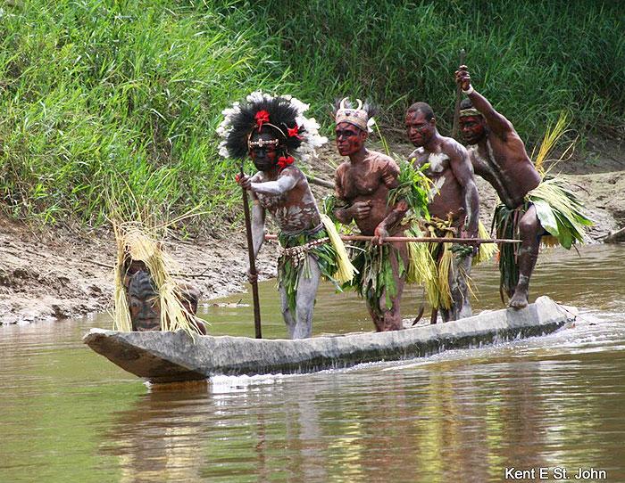 2. New Guinean Jungle- Papua New Guinea, Oceania