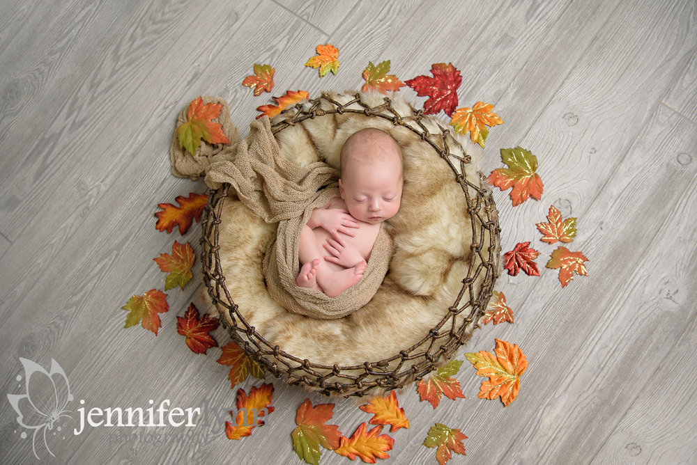 Newborn Boy Basket Fall Leaves Autumn