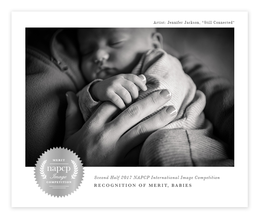 Recognition of Merit for NAPCP International Image Competition