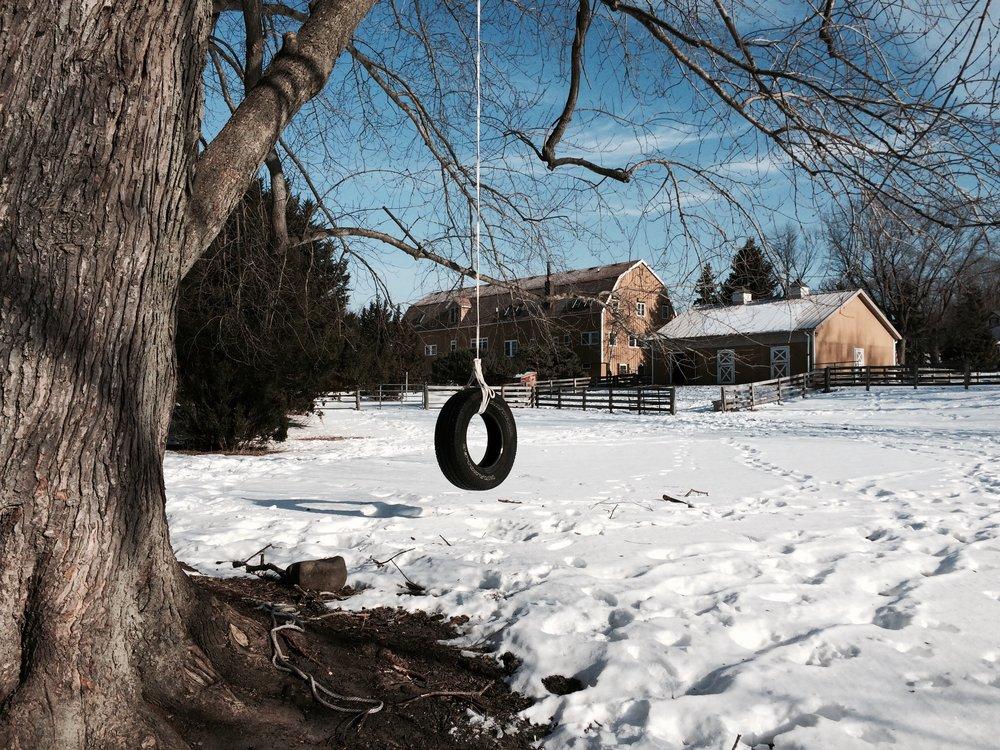 Winter Tire Swing.jpg