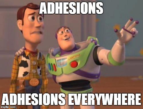 Adhesion Meme