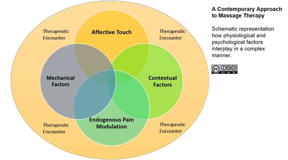 Massage therapists use a clinically-oriented multi-modal treatment based on the biopsychosocial model.
