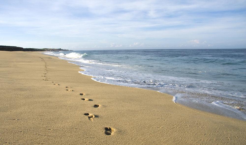 Beach_South.jpg