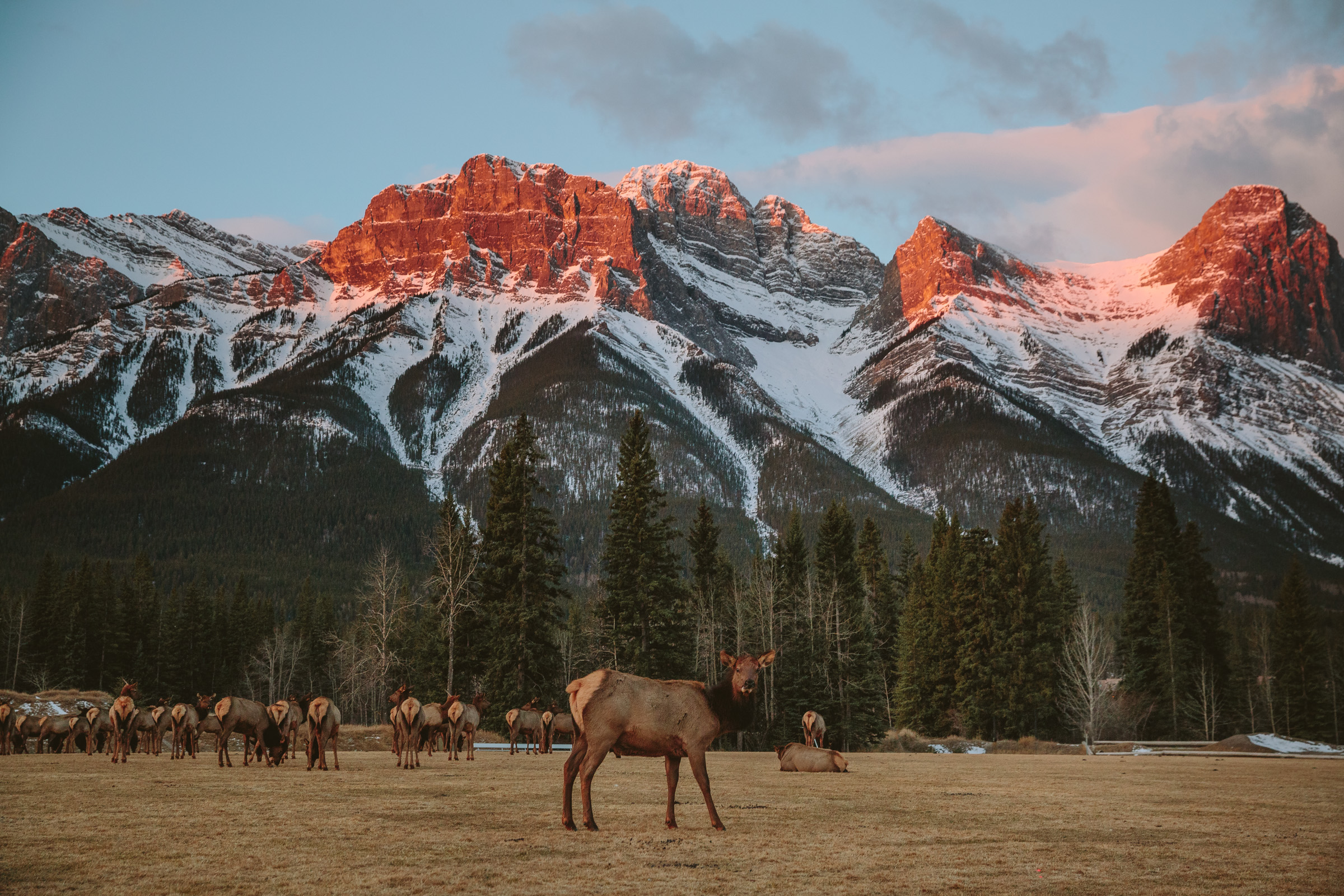canada-alberta-lifestyle-photography-mikeseehagel-34