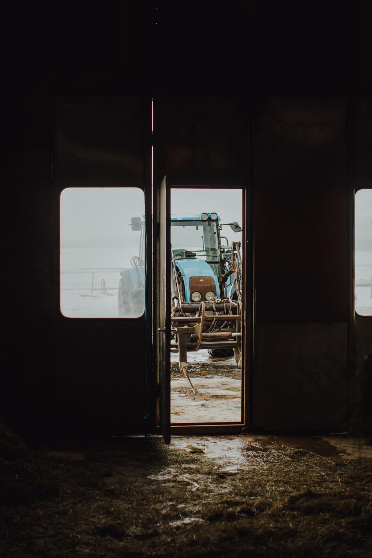 MikeSeehagel-Iceland-SheepFarm-01.jpg
