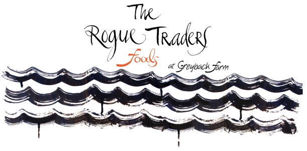 The Rogue Traders