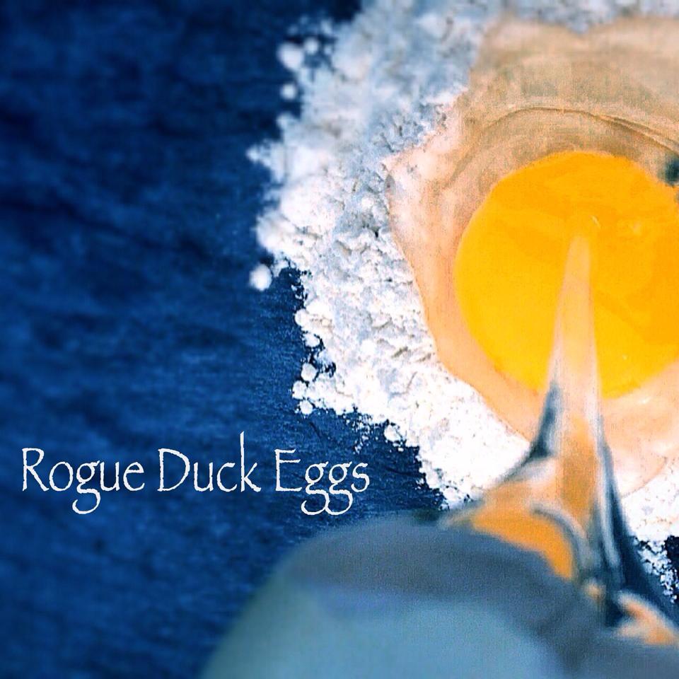 Rogue_Duck_Eggs1.jpg