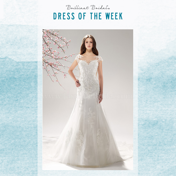 East valley dress of the week jasmine bridal wedding dress with east valley dress of the week jasmine bridal wedding dress with illusion neckline brilliant bridal junglespirit Gallery