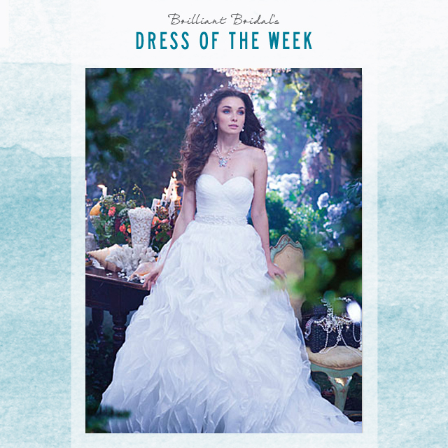 East Valley Store Dress of the Week - 2014 Alfred Angelo Ariel ...