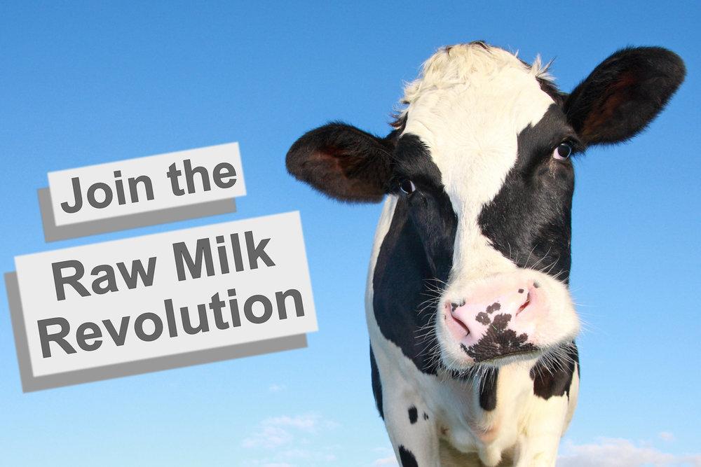 join the raw milk revolution australia