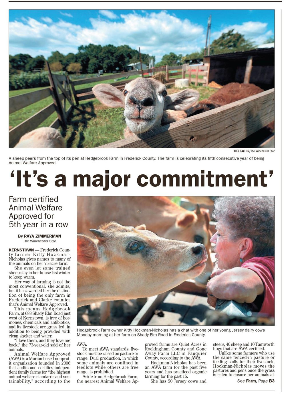 Image : a June 2015 article from The Winchester Star by Raya Zimmerman, click on images to enlarge