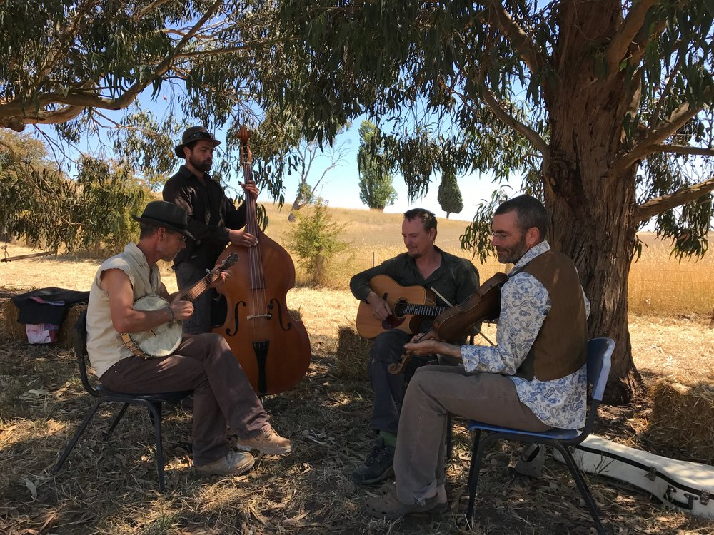 The Ciderhouse String Band
