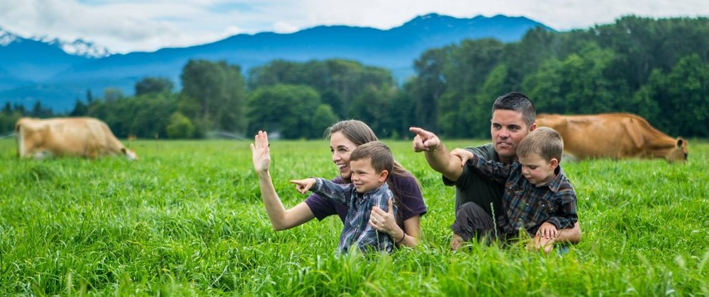Image:    Ryan, Sarah, Tyler and Wade and the cows knee deep in lush green pastures.