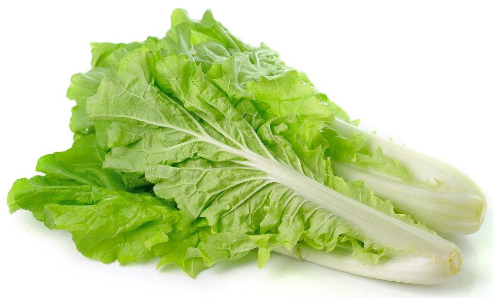 lettuce e.coli vegans and vegetarians