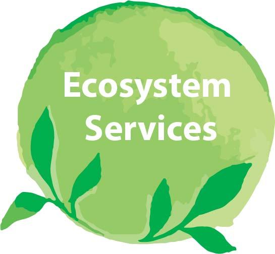 Ecosystem Services.jpg