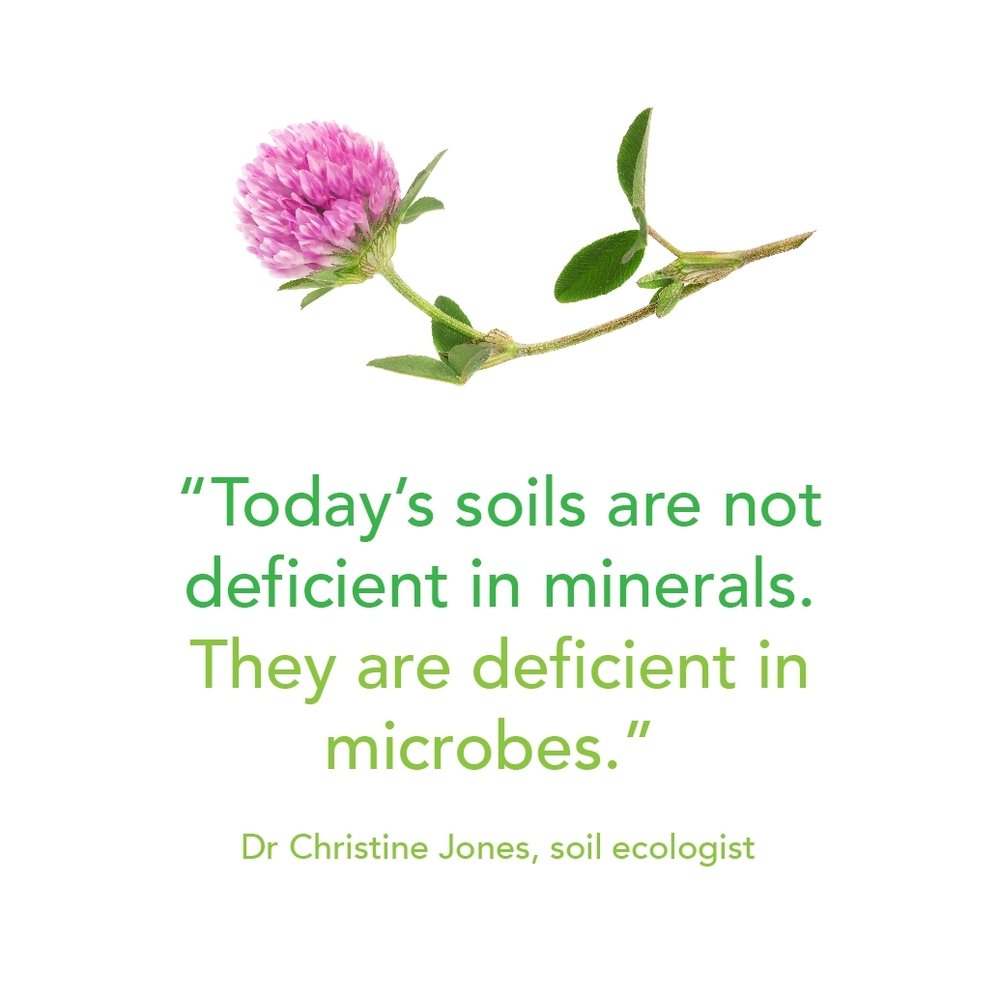 Todays soils are not deficient2.jpg
