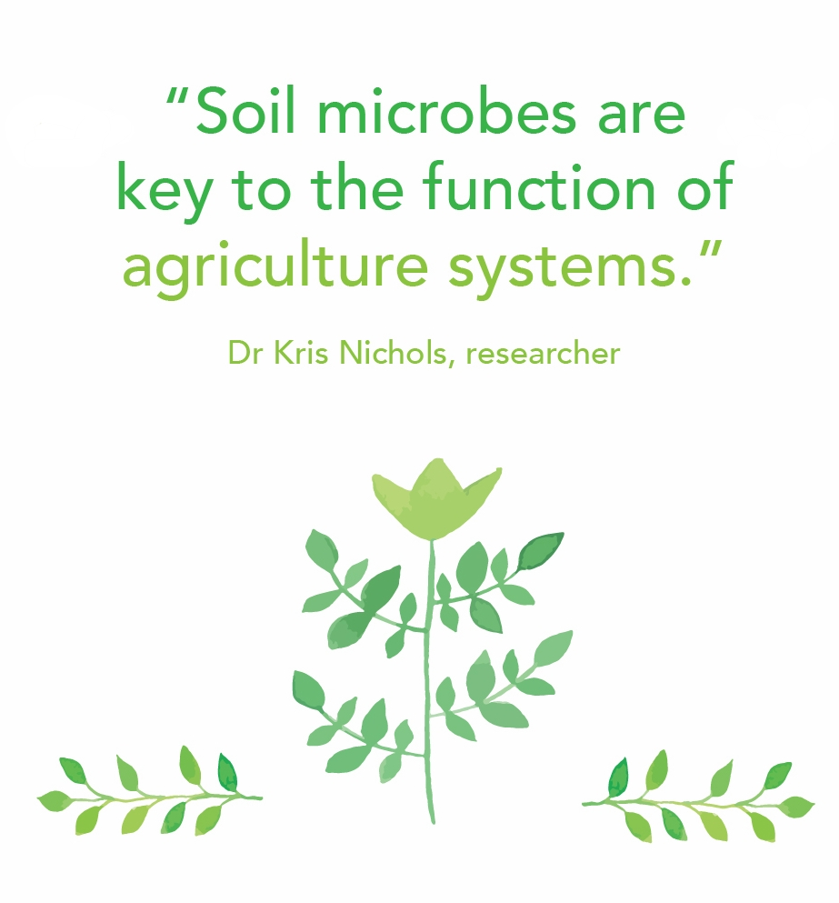 Soil microbes are key 2.jpg