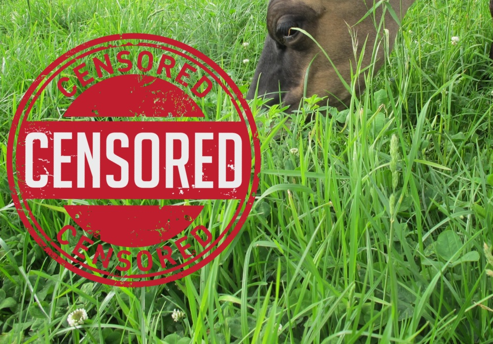 Image:   Regenerative agriculture was  one of the top 10 most censored news stories  of 2018.