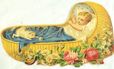 A wee bairn and cat in a cradle.