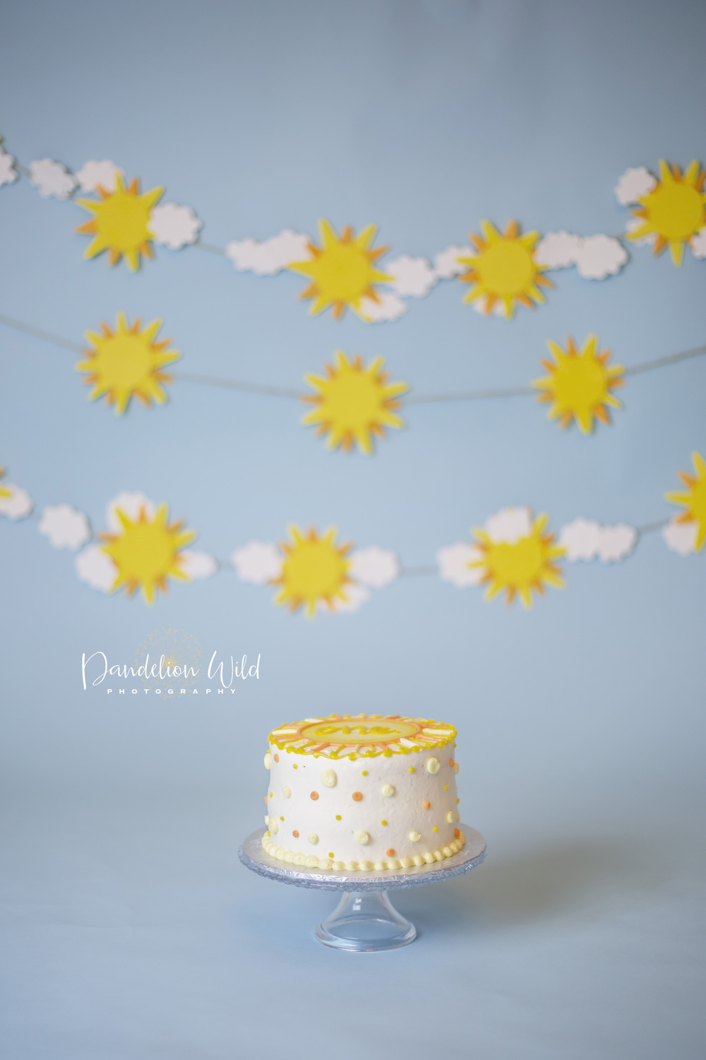 dandelion wild photography one year cake smash central
