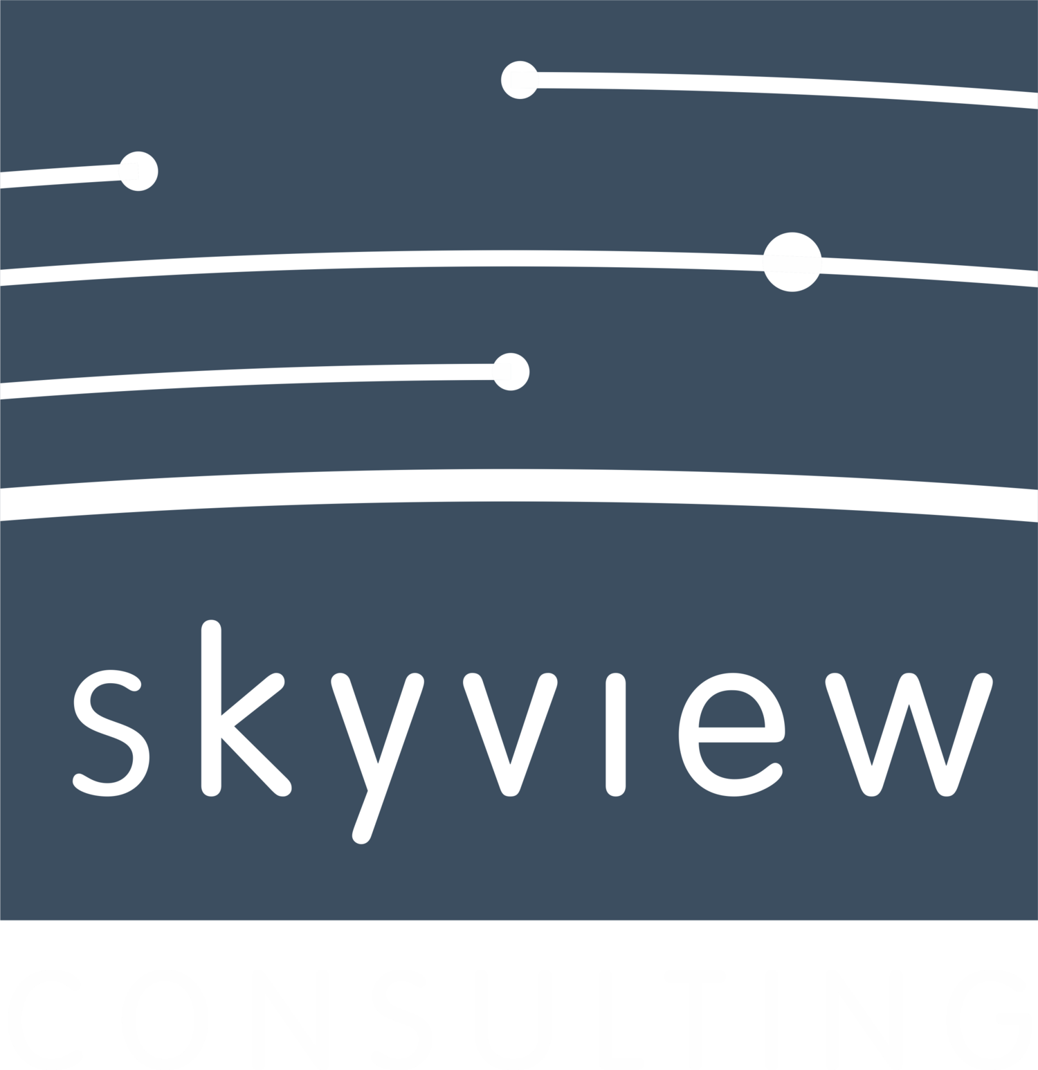 Skyview Consulting