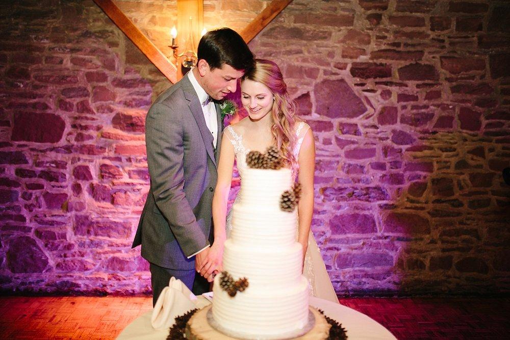 jessdavid_barnonbridge_phoenixville_winter_wedding_image_104.jpg
