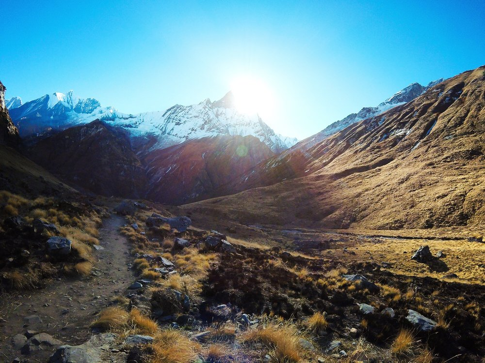 Nov 13.2, 2016   For a kilometer we enjoy a meadow trail along the Modi Khola River, the major drain of the East Annapurna Glacier. Rounding Hinku Cave, the sister peaks of Gandharwa Chuli and Machhapuchhre streak a morning sun.