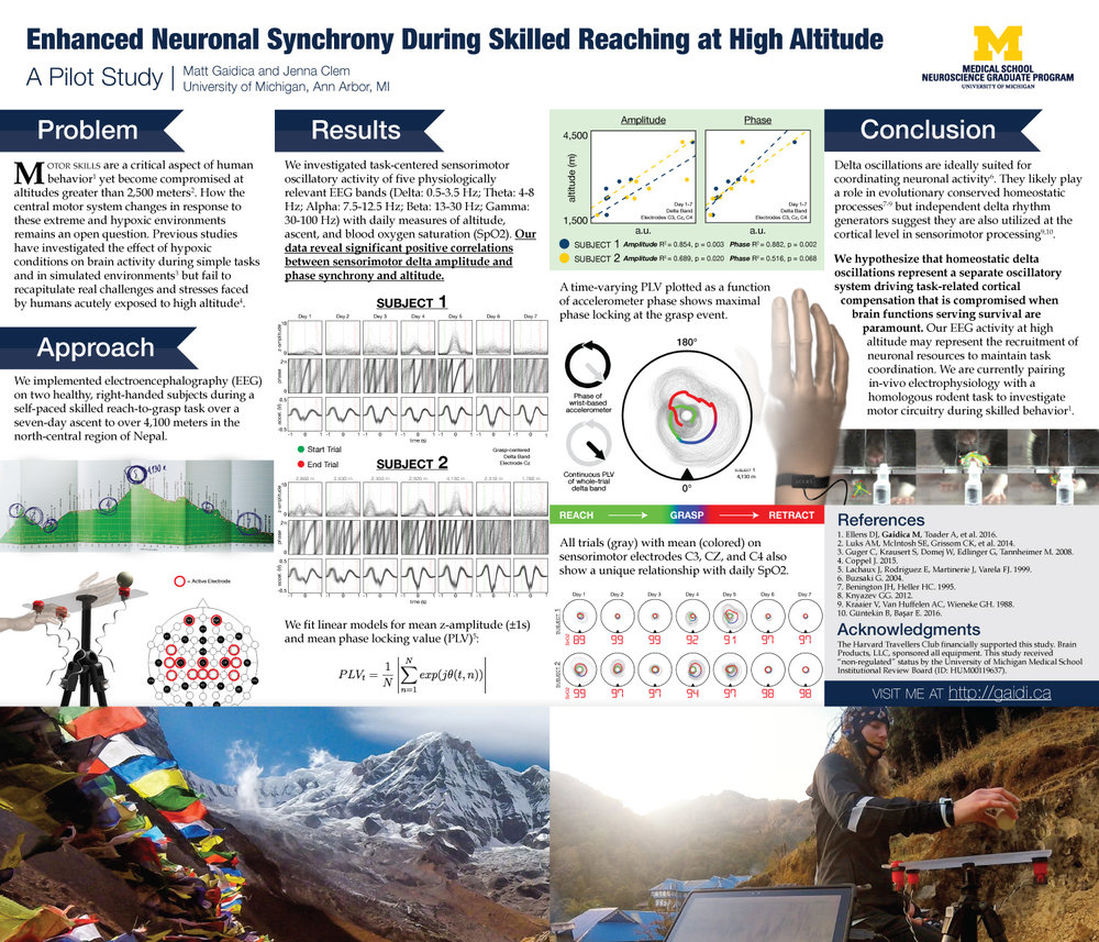 Enhanced Neuronal Synchrony During Skilled Reaching at High Altitude
