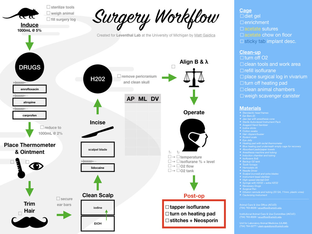 View the  Surgery Workflow PDF