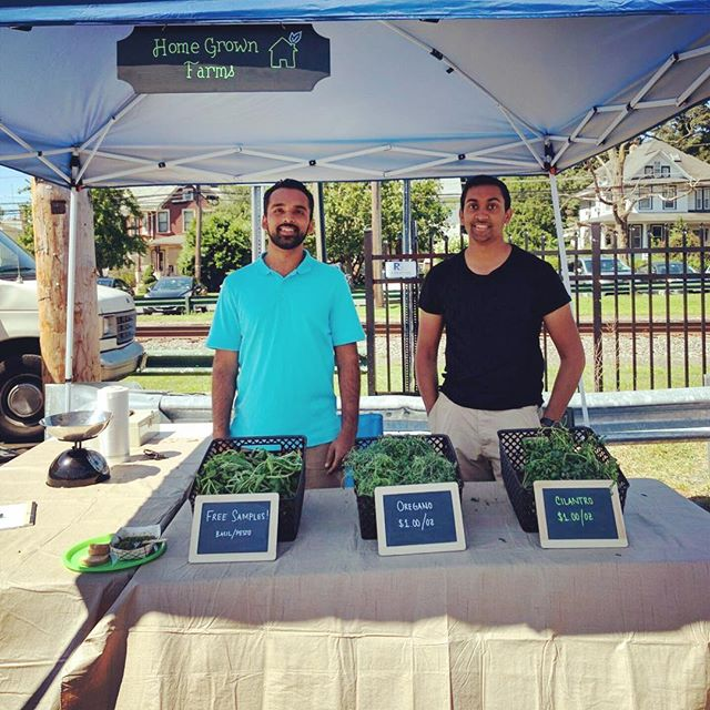 Check out our fresh hyperlocal oregano, cilantro and free samples of our basil walnut pesto! We are at the Haddon Heights Farmers Market all morning! #hgf #homegrown #haddonheightsfarmersmarket #haddonheights