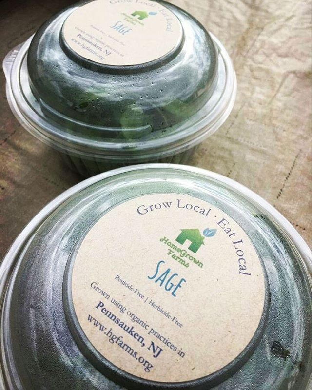 Here's some Sage advice: come check us out at Haddon Township Music Festival today from 1 to 7pm! #haddontwpmusicfest #hgf #freshherbs #growlocaleatlocal #sage