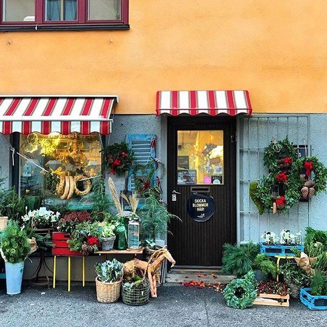 Charmigaste blomsterbutiken i hela stan = @tellusblommor i Midsommarkransen! Här hittar ni såväl vackra kransar som hyacinter, snittblommor och mycket mer.🌿