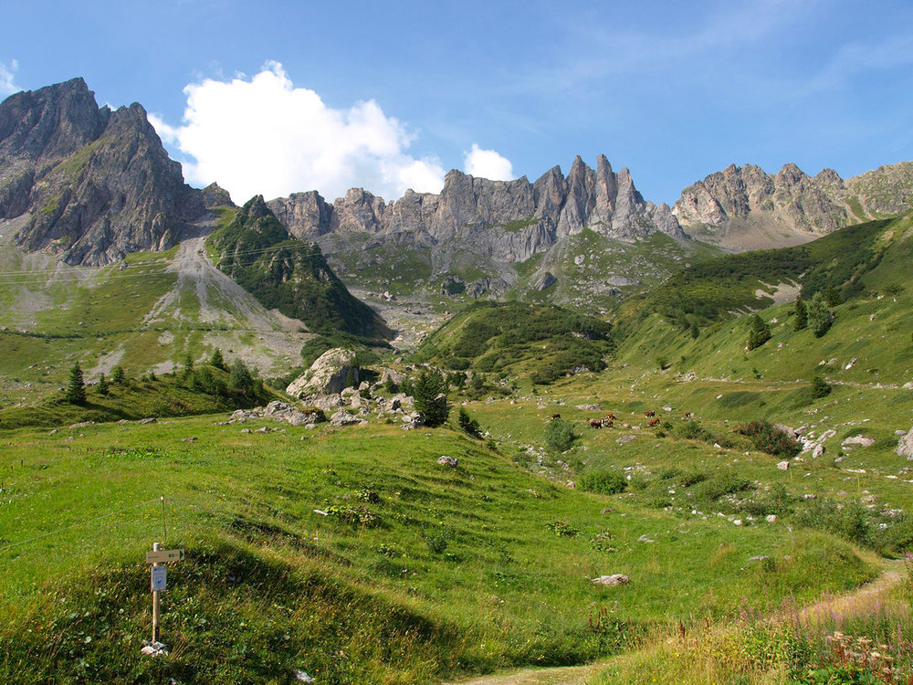 CH160794-nel-cuore-della-riserva-naturale-Contamines-Montjoie--in-Alta-Savoia.jpg
