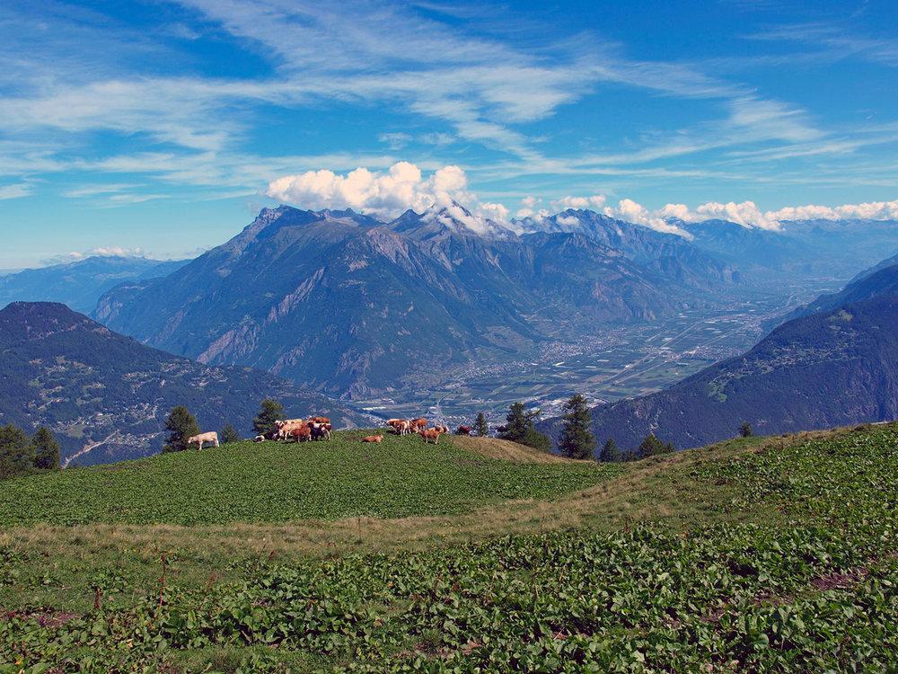 CH130108-Dagli-alpeggi-di-Bovine-uno-sguardo-panoramico-verso-la-valle-di-Martigny.jpg