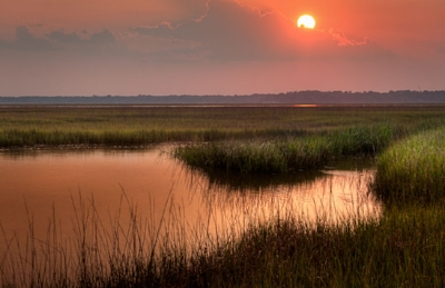 Sunset over marshlands-sounds of breezes through grass, insects, birds and the occasional leap of a frog.