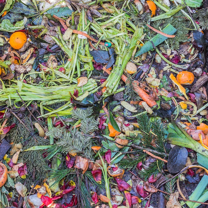picture of multi-coloured vegetable matter that will decay to compost
