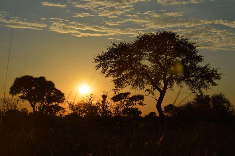 sunrise - credit Tanja van de Veni.jpg